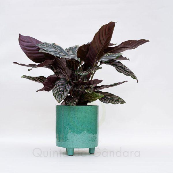 Vaso Ceramica 4 (5)