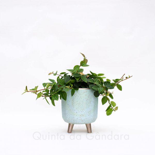 Vaso Ceramica (6)
